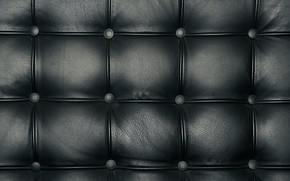 Picture sofa, pattern, leather, back