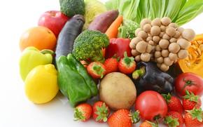 Picture lemon, mushrooms, Apple, orange, strawberry, berry, eggplant, white background, pumpkin, pepper, fruit, vegetables, tomatoes, carrots, …