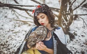Picture winter, girl, snow, style, owl, bird, fantasy, image, snowfall, Snow white, Marketa Novak