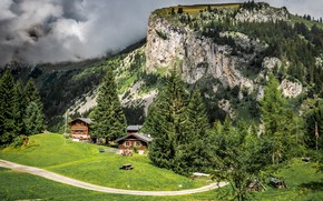 Picture road, greens, forest, grass, the sun, clouds, trees, mountains, rocks, France, meadow, houses, Allamont