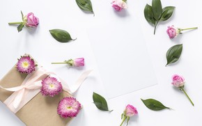 Picture flowers, background, roses, pink, buds, pink, flowers, background, roses