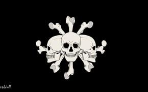 Picture bones, skull, One Piece, black background