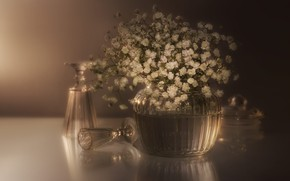 Picture glass, flowers, bouquet, glasses, white