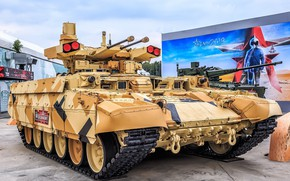 Picture Frame, armor, Terminator, BMPT, The Russian Army, Exhibition, Object 199