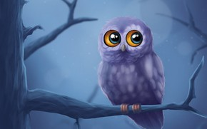 Picture night, tree, owl, branch, art