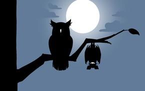 Picture moon, minimalism, night, clouds, tree, bat, artist, digital art, artwork, branch, owl, silhouette, simple background, …