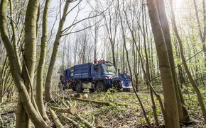 Picture forest, trees, Mercedes-Benz, truck, the trailer, equipment, machinery, Unimog, U530