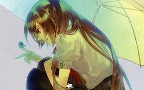 Picture girl, rain, snail, Starry Sky, Starry★Sky, visual novel, anime (2011)