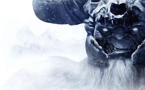 Picture Wizards of the Coast, Dark Alliance, Dungeons & Dragons: Dark Alliance, Tuque Games