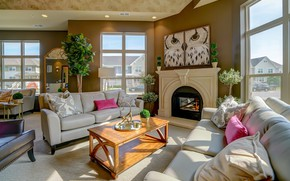 Picture room, interior, fireplace, living room