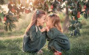 Picture branches, nature, children, tree, apples, girls, fruit, Apple, Козел Марта