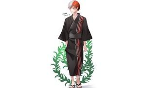 Picture plant, guy, Boku no Hero Academy, Todoroki Shouto, Todoroki Shoto, My heroic academia