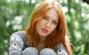 Picture look, model, portrait, redhead, Sophie