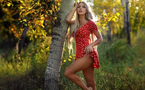Wallpaper greens, grass, look, the sun, trees, sexy, pose, model, makeup, figure, dress, hairstyle, blonde, legs, ...