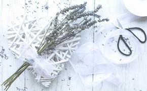 Picture white, lavender, scissors
