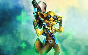 Picture weapons, character, Paladins, Pip