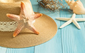 Wallpaper beach, background, Board, star, shell, summer, beach, wood, marine, starfish, seashells