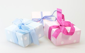 Picture holiday, box, gift, tape, gifts, three, bows, bow, box, bows