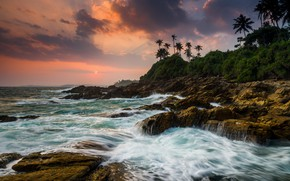 Picture palm trees, the ocean, coast, the evening, Sri Lanka, Rocky shoreline at Tangalle