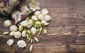 Picture flowers, bouquet, white, wood, decor