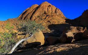 Picture tree, Namibia, Spitzkoppe