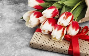 Picture gift, bouquet, tulips
