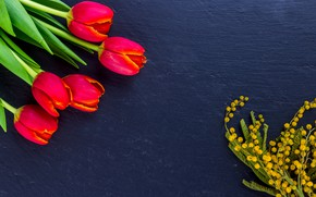 Picture bouquet, tulips, Mimosa