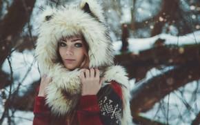 Picture winter, forest, girl, ears, sphereshape