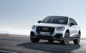 Picture Audi, 2019, Audi SQ2 2019, SQ2