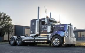 Picture Truck, Kenworth, T409