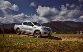 Picture grass, movement, Renault, pickup, logs, 4x4, 2017, Alaskan, gray-silver