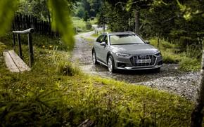 Picture water, Audi, universal, 2019, A4 Allroad Quattro