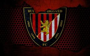 Picture wallpaper, sport, logo, football, Honved