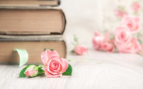 Picture table, rose, books