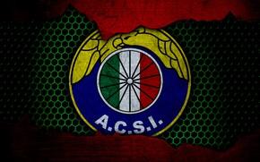 Picture wallpaper, sport, logo, football, Audax Italiano