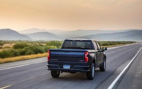 Picture road, Chevrolet, back, pickup, Silverado, dark blue, 2019, RST