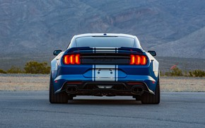 Picture Shelby, rear view, 2018, Wide Body, Super Snake