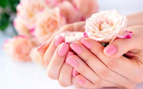 Picture roses, hands, manicure