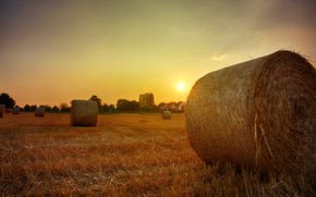 Picture field, autumn, the sky, the sun, light, sunset, nature, the evening, village, cleaning, space, hay, …