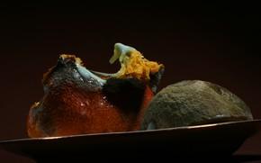 Picture macro, oranges, ART