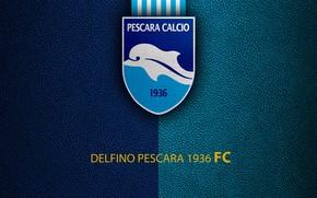 Picture wallpaper, sport, logo, football, Italian Seria A, Delfino Pescara 1936