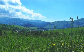 Picture summer, Clouds, Sky, Grass, nature, valley, Slovakia, moutains, field flowers