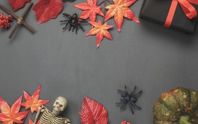 Picture autumn, leaves, background, tree, gifts, Halloween, halloween, wood, background, autumn, leaves, autumn, gifts, maple