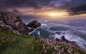 Picture sea, landscape, sunset, clouds, nature, rocks, shore, grass