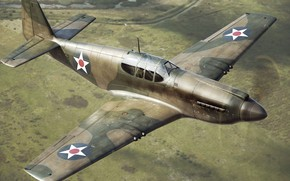 Picture Mustang, P-51, UNITED STATES AIR FORCE, North American, long-range, American single-seat fighter