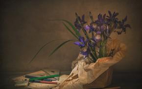Picture pencils, still life, irises