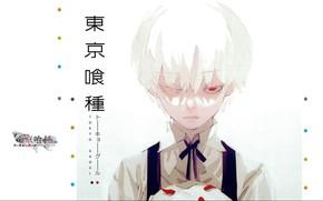 Picture monster, red eye, gray, Tokyo Ghoul, Ken Kanek, Tokyo Ghoul