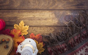 Picture autumn, leaves, tree, colorful, scarf, lantern, wood, acorns, background, autumn, leaves, lantern, maple