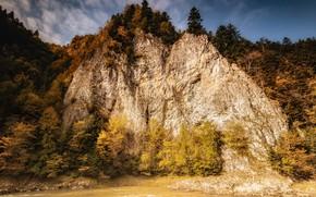 Picture autumn, river, mountain