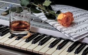 Wallpaper rose, notes, whiskey, glass, keys
